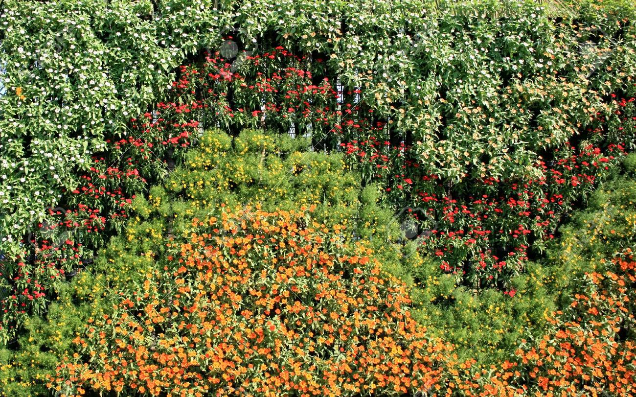Av m xico jardines verticales for Jardines verticales mexico